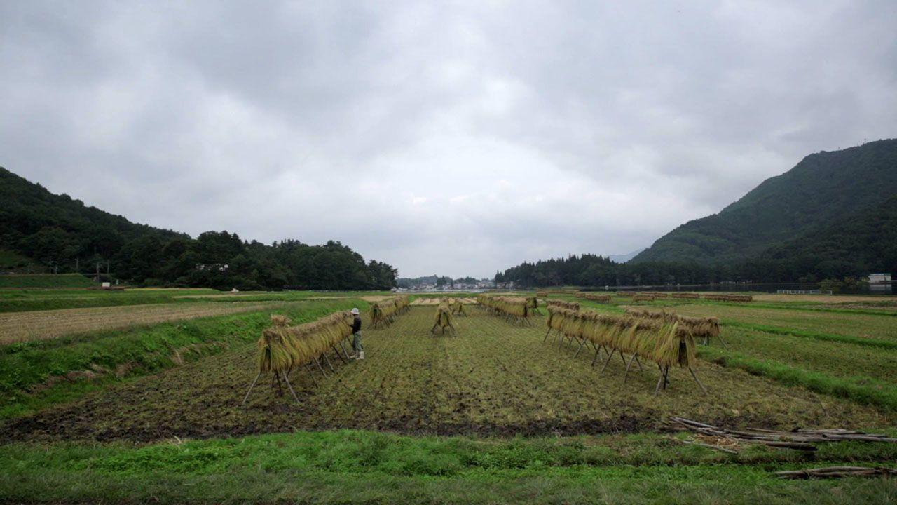 yamamoto_07.jpg
