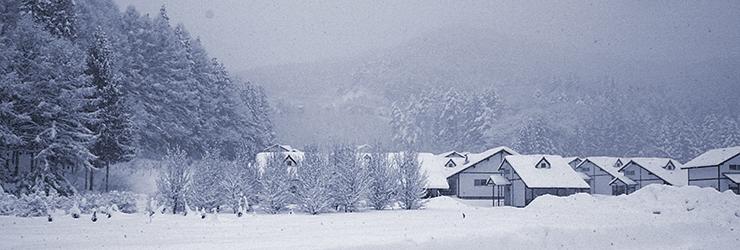 740x250_futae_winter.png