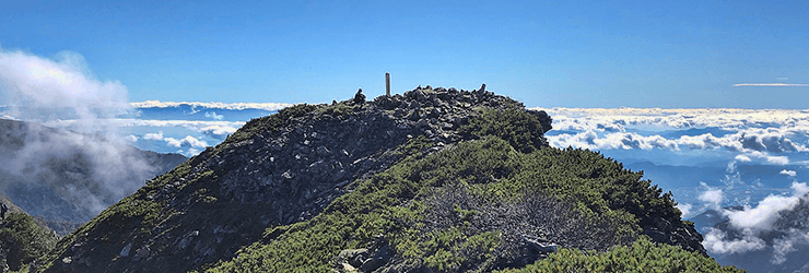 740x250_narusawa_summit.png